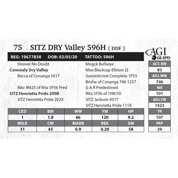 Sitz DRY Valley 596H