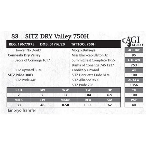 Sitz DRY Valley 750H
