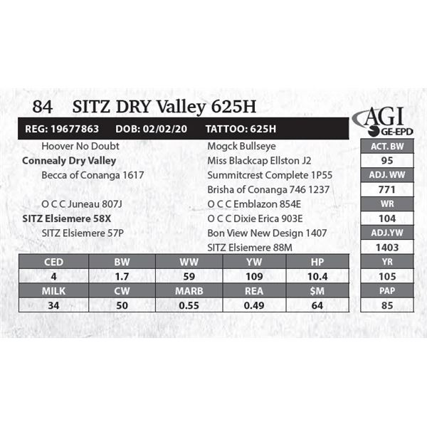 Sitz DRY Valley 625H