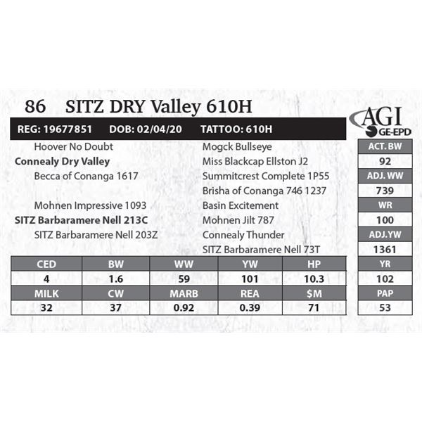 Sitz DRY Valley 610H