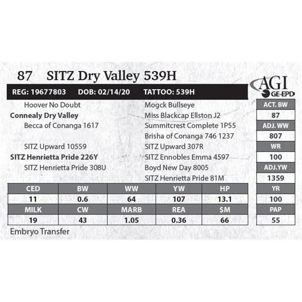 SITZ Dry Valley 539H