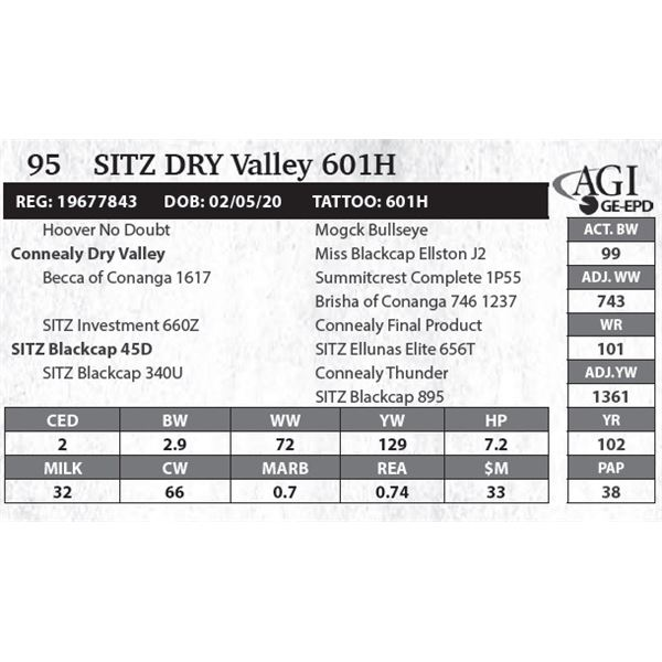 Sitz DRY Valley 601H