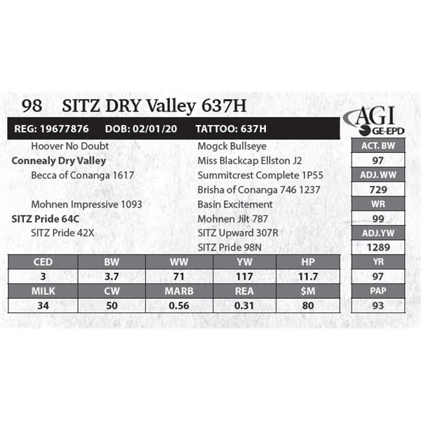 Sitz DRY Valley 637H