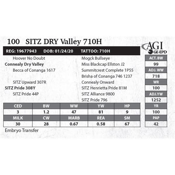Sitz DRY Valley 710H