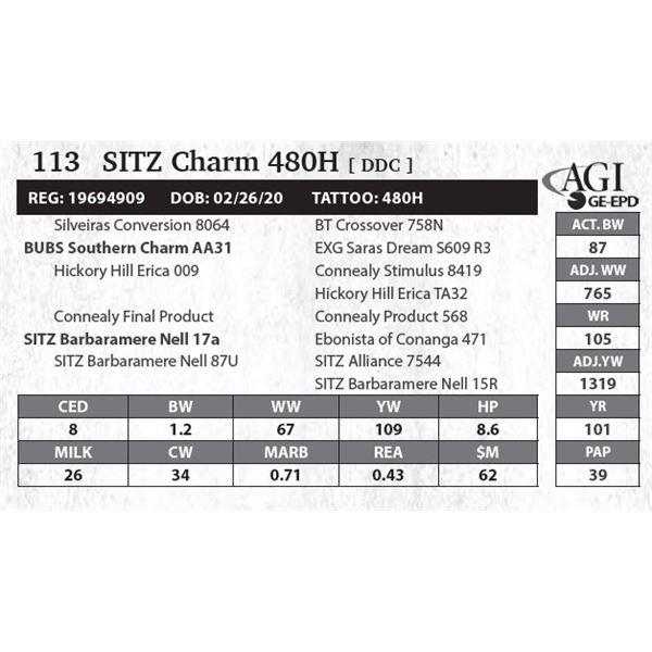 SITZ Charm 480H