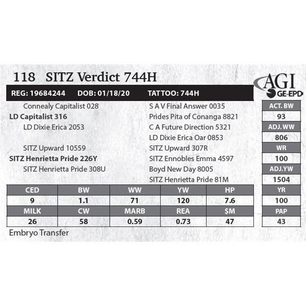 SITZ Capitalist 744H
