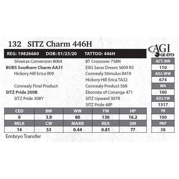 SITZ Charm 446H
