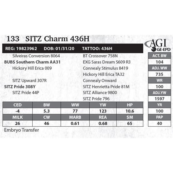 SITZ Charm 436H