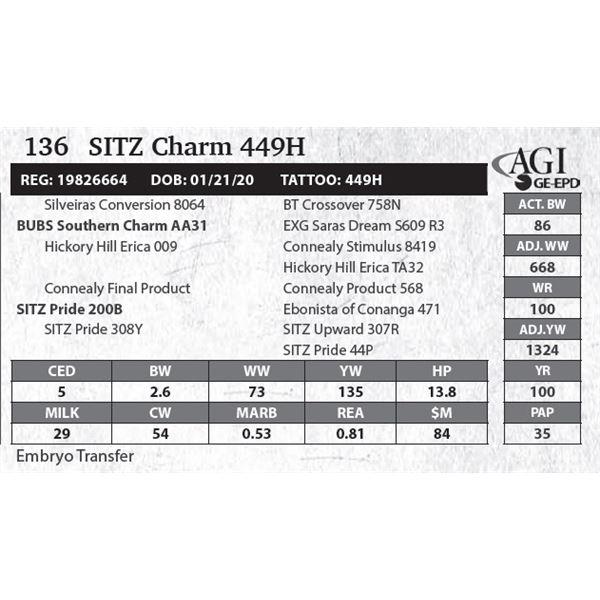 SITZ Charm 449H