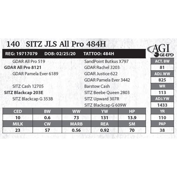 Sitz JLS All Pro 484H