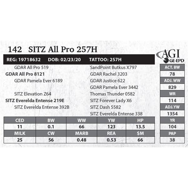 SITZ All Pro 257H