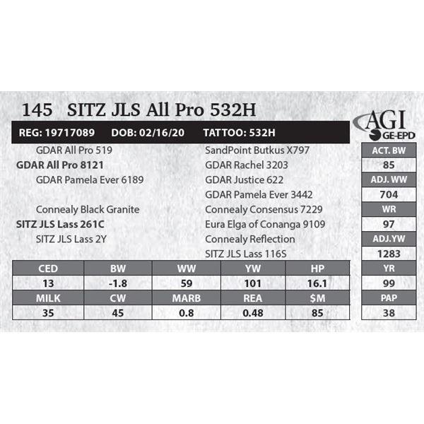 Sitz JLS All Pro 532H