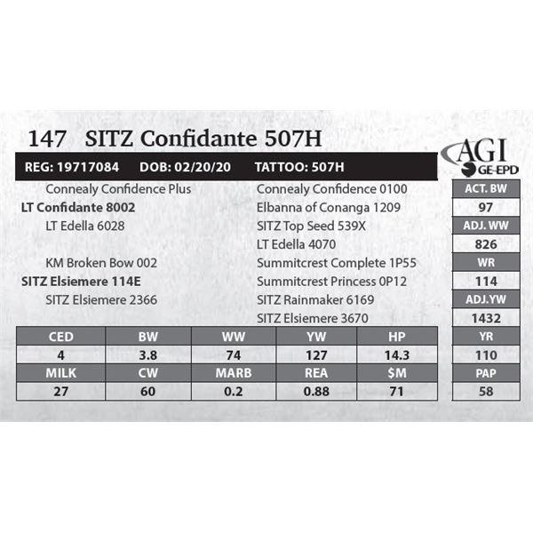 SITZ Confidante 507H