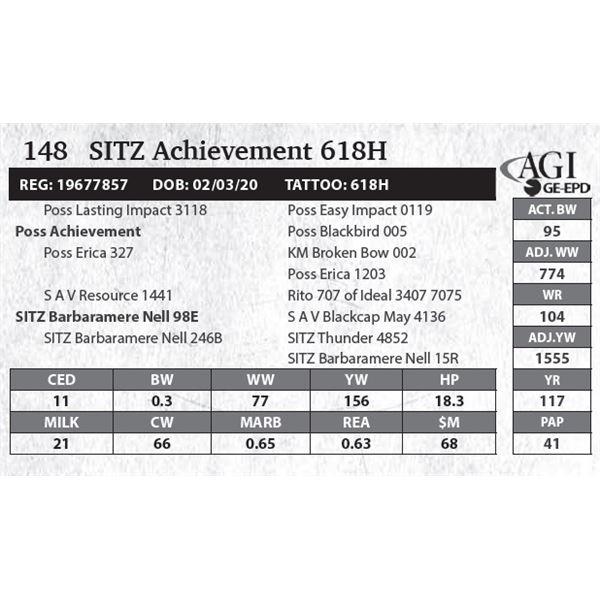 SITZ Achievement 618H