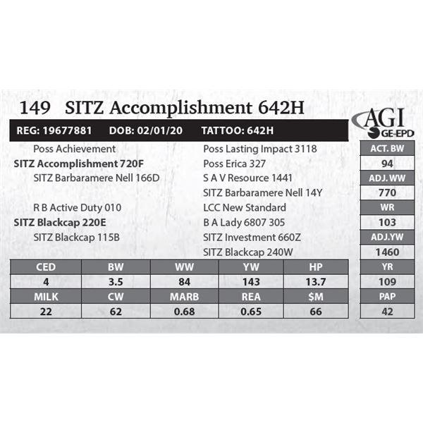 SITZ Accomplishment 642H