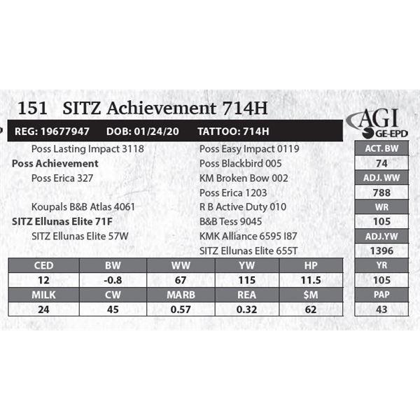 SITZ Achievement 714H