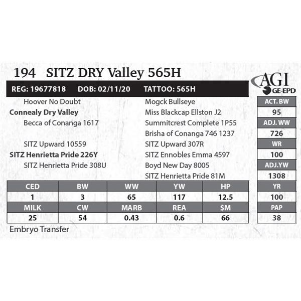 SITZ Dry Valley 565H