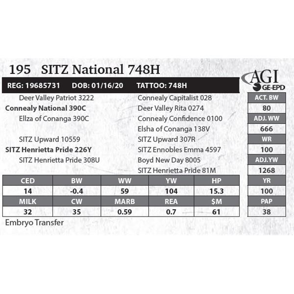 SITZ National 748H