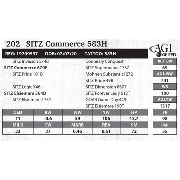 Sitz Commerce 583H