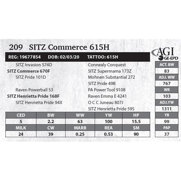SITZ Commerce 615H