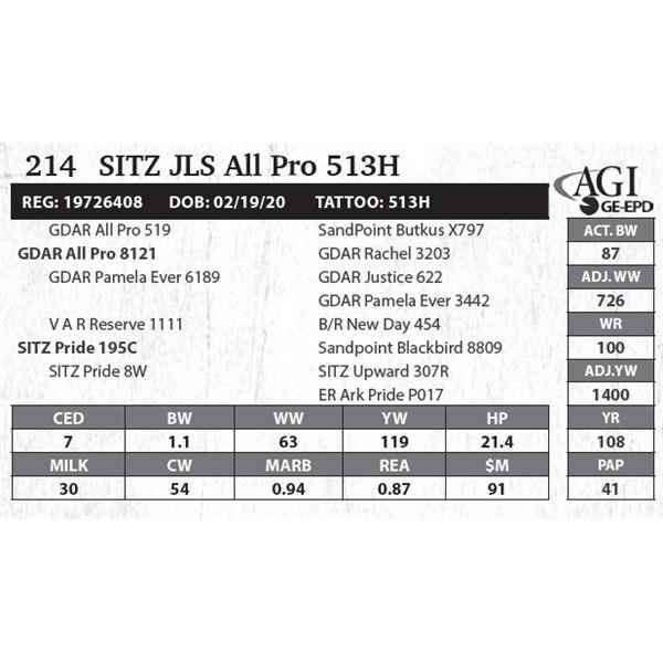 SITZ JLS All Pro 513H