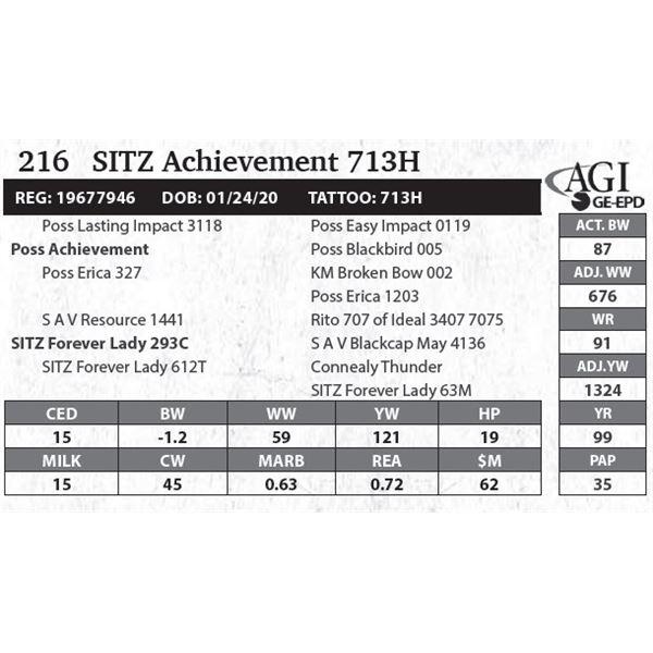 SITZ Achievement 713H