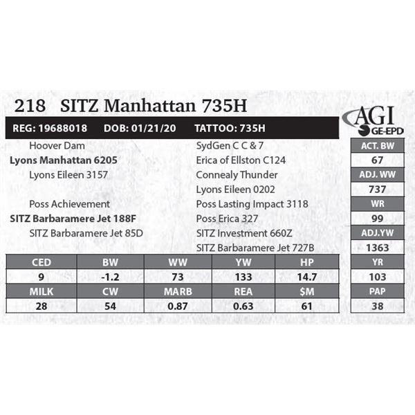 Sitz Manhattan 735H