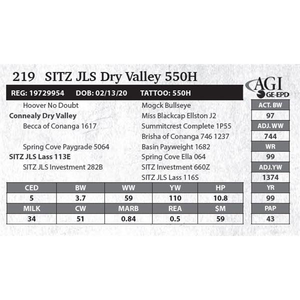SITZ JLS Dry Valley 550H