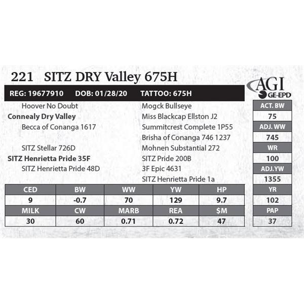 Sitz DRY Valley 675H