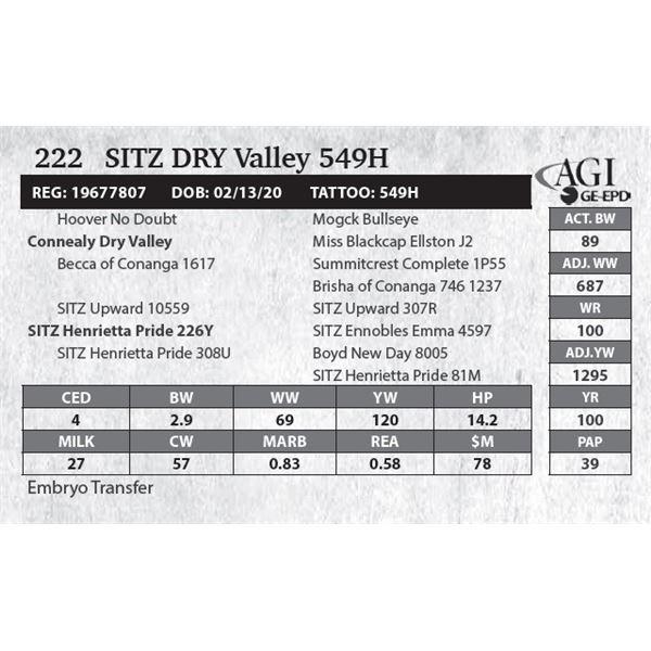 SITZ Dry Valley 549H
