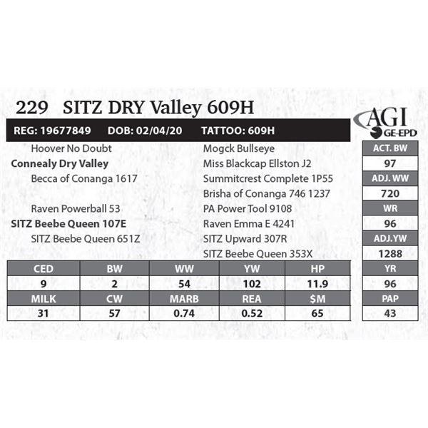 Sitz DRY Valley 609H