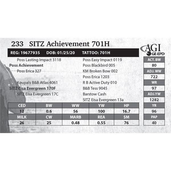 SITZ Achievement 701H
