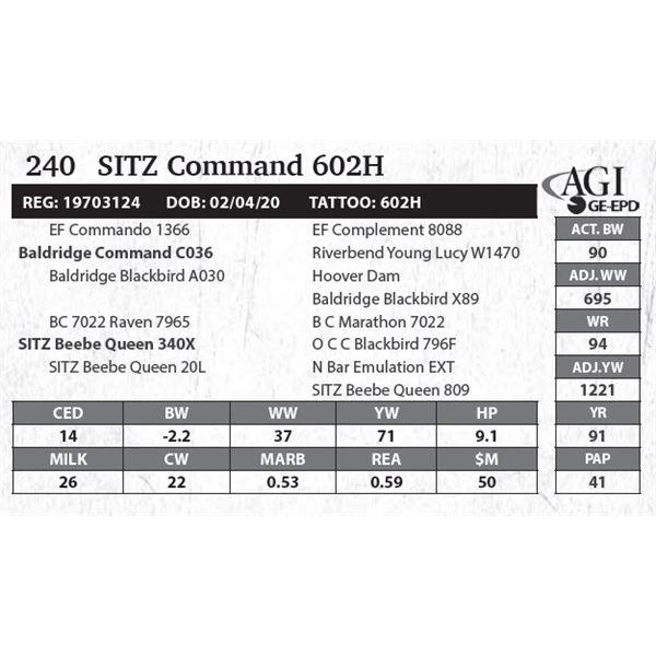 Sitz Command 602H