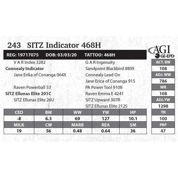 Sitz Indicator 468H