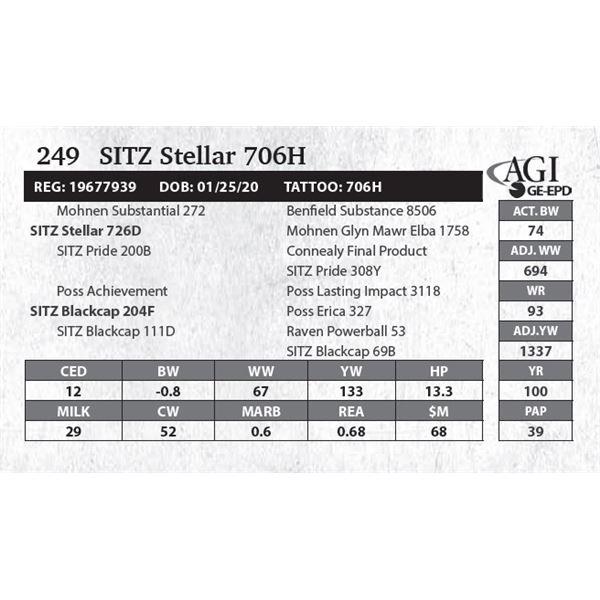 SITZ Stellar 706H