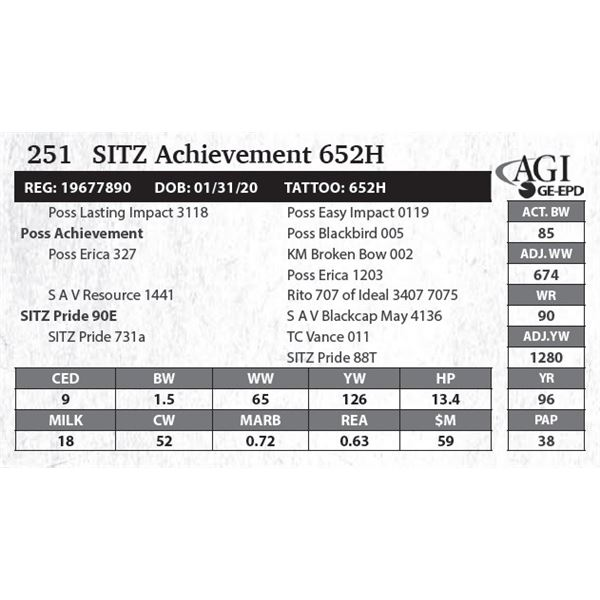 SITZ Achievement 652H