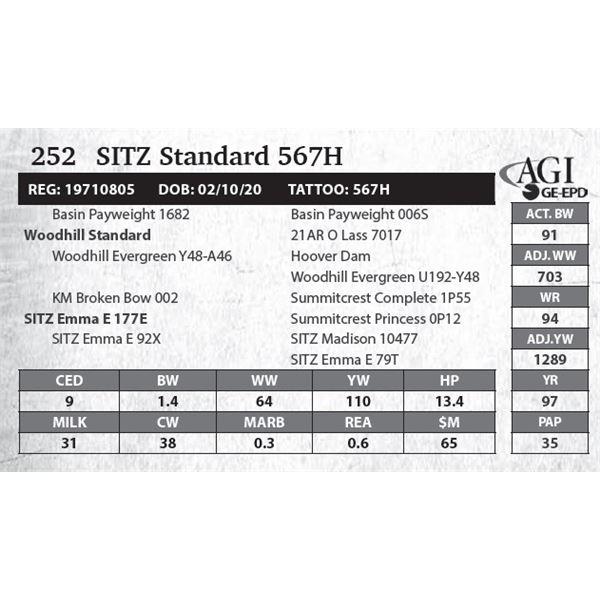 Sitz Standard 567H