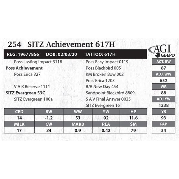 SITZ Achievement 617H