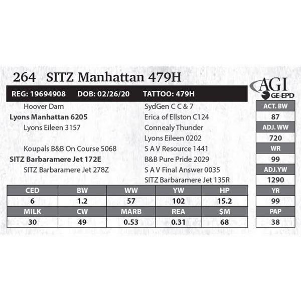 SITZ Manhattan 479H