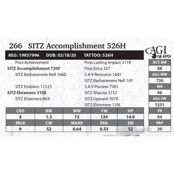 Sitz Accomplishment 526H