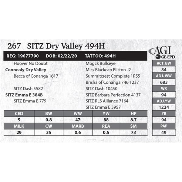 SITZ Dry Valley 494H