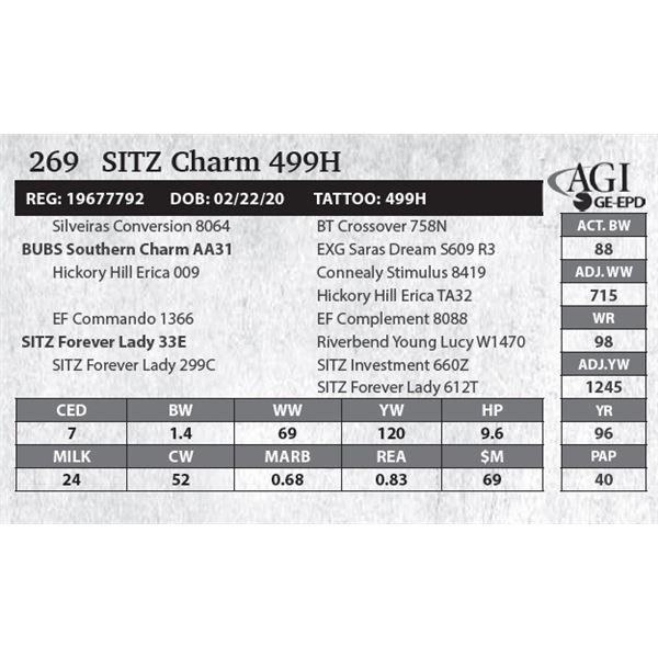 SITZ Charm 499H