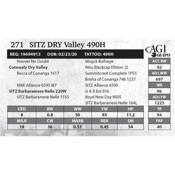 SITZ Dry Valley 490H