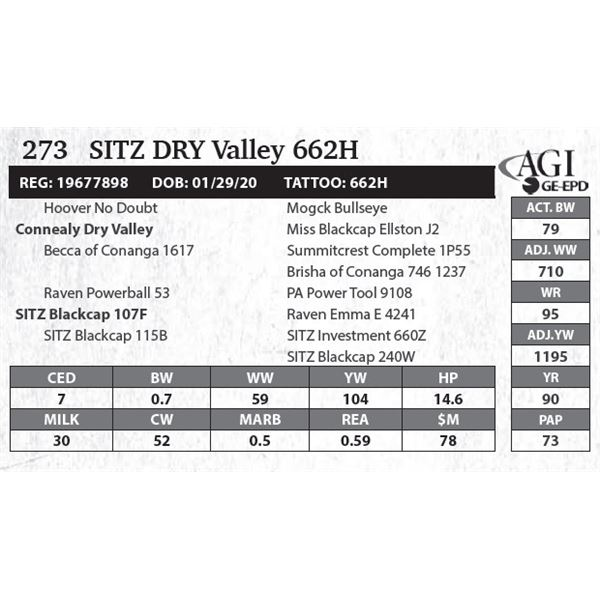 Sitz DRY Valley 662H