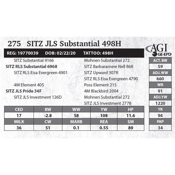 Sitz JLS Substantial 498H