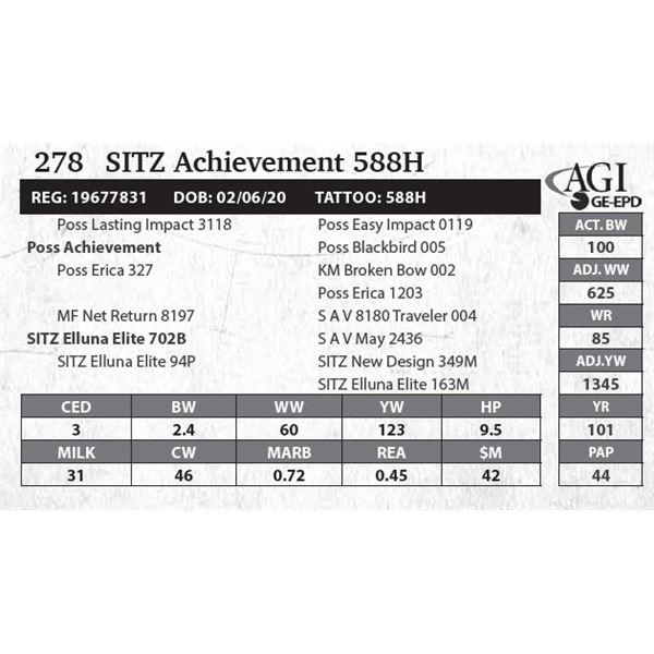 SITZ Achievement 588H