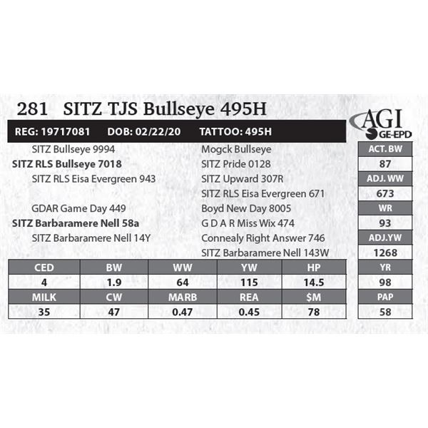 Sitz TJS Bullseye 495H