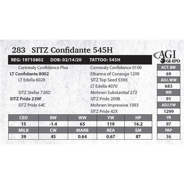 SITZ Confidante 545H