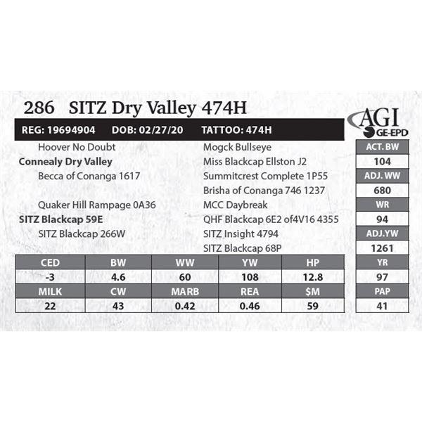 SITZ Dry Valley 474H