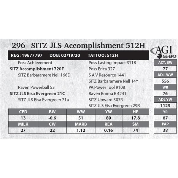 SITZ JLS Accomplishment 512H